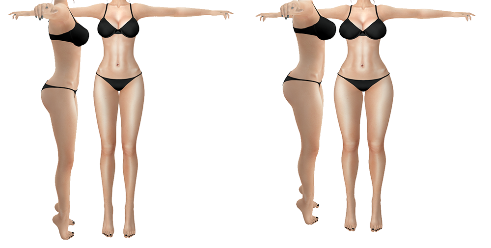 A Second Life avatar's body is shown from front and side with two different shapes. Each body looks different.