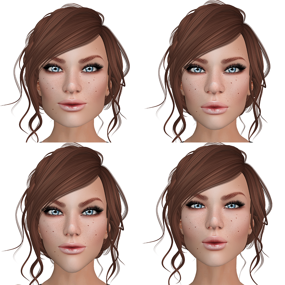 A Second Life avatar's head with different shapes. There are four heads and each looks different.