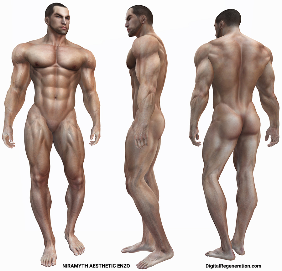 The Second Life body Niramyth Aesthetic Enzo as seen from the front, side, and back.